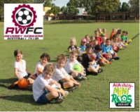 2016-summersoccer-kindy-feature