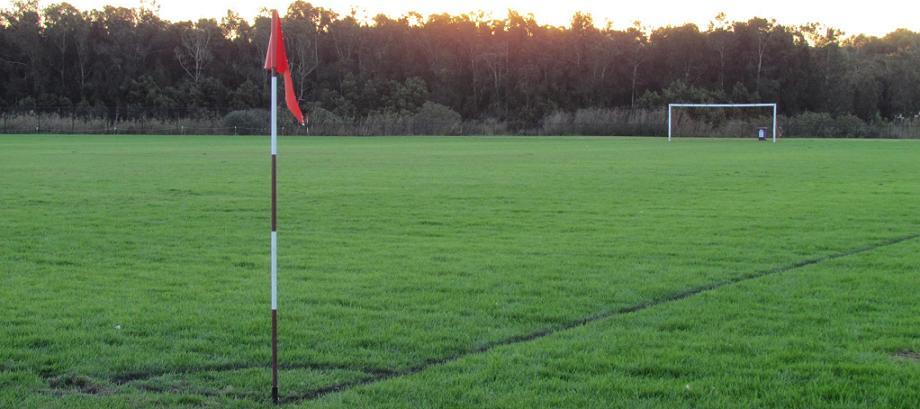 Panania soccer